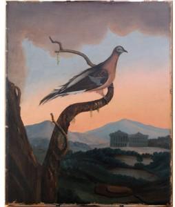 Passenger Pigeon - After Conservation